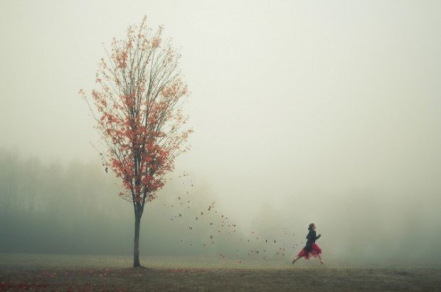 Photo taken by Elizabeth Gadd