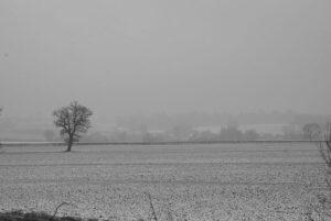 Bleak winter scene