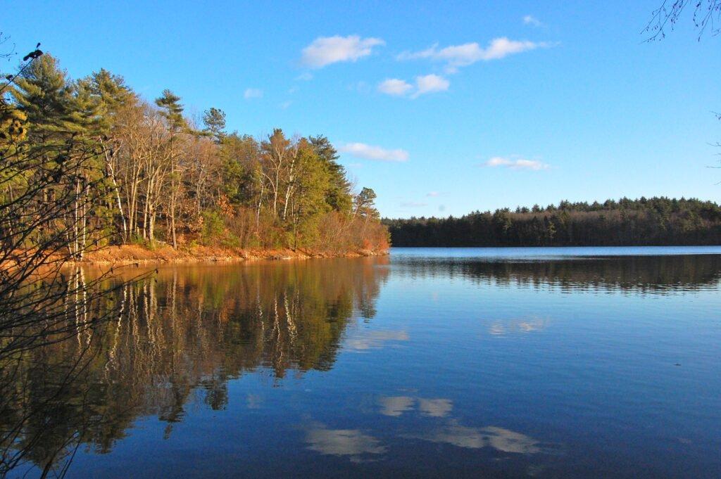 Wladen Pond Fall 2010